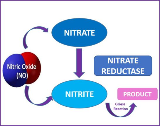 how to get the nitrate levels from nitrate-nitrate